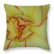 Begonia 4 Throw Pillow