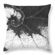 Begonia Escargot Leaf Venation Throw Pillow