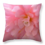 Begonia Flower Passion Pink Throw Pillow