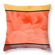 Begonia Petals Triptych Throw Pillow