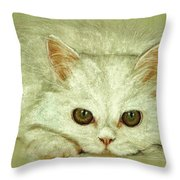 Beguiling Eyes Throw Pillow