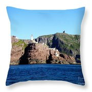 Behind Fort Amherst Rock 2 By Barbara Griffin Throw Pillow