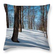 Behind Mccauley Mountain Throw Pillow