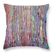 Behind The Curtains Throw Pillow