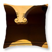 Behind The Curve Throw Pillow