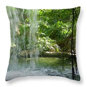Behind The Falls Throw Pillow