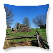 Behind The Fences  Throw Pillow by Olivier Le Queinec