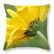 Behind The Petals Throw Pillow