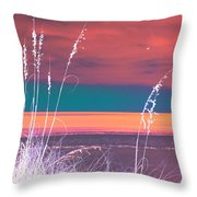 Behind The Sea Oats Throw Pillow