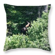 Behind The Shrubs Throw Pillow