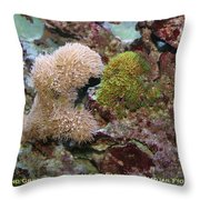 Beige And Green Star Corals Throw Pillow