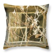 Beige Window At The End Of Winter Throw Pillow
