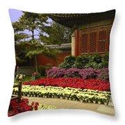 Beijing Summer Palace Throw Pillow