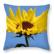 Bright Yellow Happy Sunshine Throw Pillow