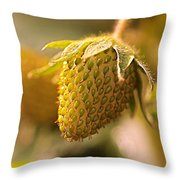 Being Young And Green Throw Pillow by Rona Black