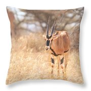 Beisa Oryx Orxy Beisa Throw Pillow