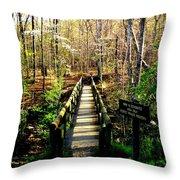 Belfast Trail Throw Pillow