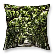 Believes ... Throw Pillow