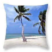 Beautiful Belize Palms Throw Pillow