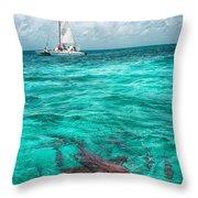 Belize Turquoise Shark N Sail  Throw Pillow