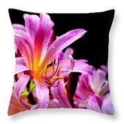 Belladonna Lilies Throw Pillow