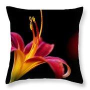 Belladonna Lily Throw Pillow