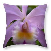 Belle Isle Orchid Throw Pillow