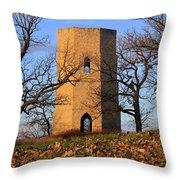 Beloit Historic Water Tower Throw Pillow