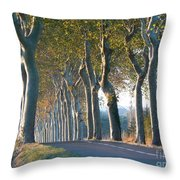 Beloved Plane Trees Throw Pillow
