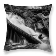 Below Anna Ruby Falls In Black And White Throw Pillow