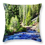 Belt Creek Throw Pillow