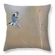 Belted Kingfisher 3 Throw Pillow
