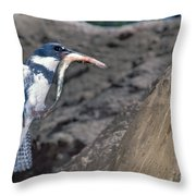 Belted Kingfisher With Prey Throw Pillow