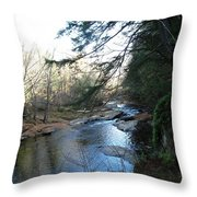 Belvidere Junction Stream Vermont Throw Pillow