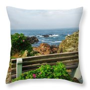 Marginal Way Throw Pillow by Diane Valliere