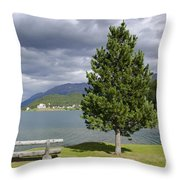 Bench And Tree Throw Pillow