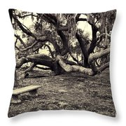 Bench And Trees Bw Throw Pillow