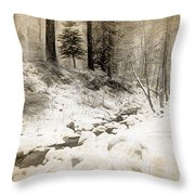 Bench By Creek Throw Pillow