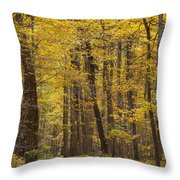 Bench In Fall Color Throw Pillow