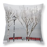 Bench On Lakefront In Winter Throw Pillow