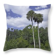 Benched At Rainbow Springs Campground Throw Pillow