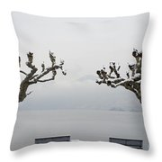 Benches And A Trees Throw Pillow