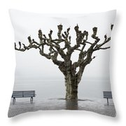 Benches And Tree Throw Pillow