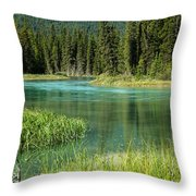 Bend In Mistaya River Throw Pillow