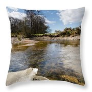 Bend In The Breamish River Throw Pillow
