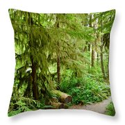 Bend In The Rainforest Throw Pillow
