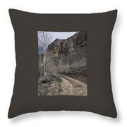 Bend In The Road - Waterfalls Throw Pillow