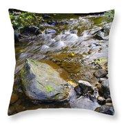 Bending Between The Rocks Throw Pillow