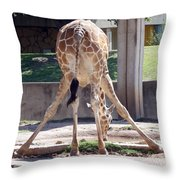 Bending For Drink Throw Pillow