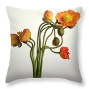 Bendy Poppies Throw Pillow by Norman Hollands
